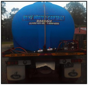 Blue Water Supply Camden MacArthur Area community providing clean clear tank water